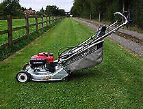 Gardening mowing and landscaping and maintenance