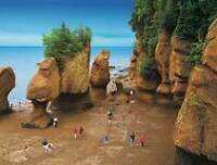 2 ADULT DAY PASSES FOR HOPEWELL ROCKS...2015 .. GOOD FOR 2 DAYS