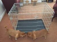 Dog Cage - Folding - excellent condition - 2 careful owners