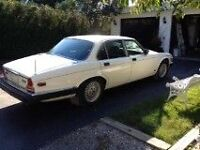 Cruise around in a 1987 Jag