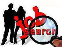 Looking for a job / Cherche emploi