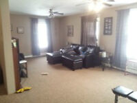 Beautiful  Bdrm aprtmnt! large deck, bus route H&W included!