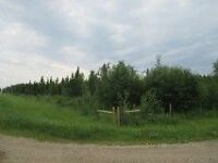 Land for sale 160 Acres