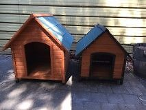 Dog Kennel (large and medium) Morphettville Marion Area Preview