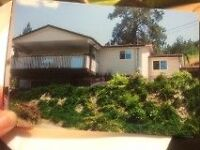 Room for Rent in Naramata