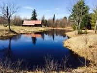 45 Acre income property/lake/forest