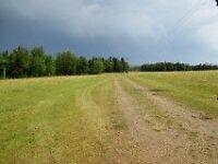Land for Sale Quarter Section