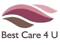 Care Team Leader & Administrator required - Stanmore