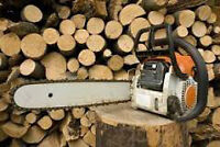 TREE REMOVAL - 25% OFF until JUNE 1st
