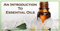 Are you interested in learning more about essential oils?
