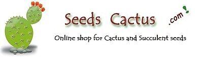 SeedsCactus