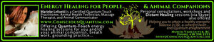 Quantum-Touch Energy Healing for People and Animal Companions North Shore Greater Vancouver Area image 2