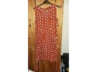 Size 16 Dorothy Perkins Brown spotty dress