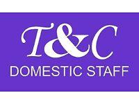 Domestic Couple - Housekeeper & Gardener Handyman Somerset