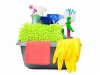 Domestic cleaner JustClean service