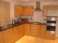 Fantastic Fully Furnished Executive Rooms in a Modern House C B 1