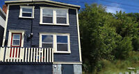 renovated cozy two bedroom detached house, fully furnished