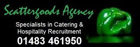 CHRISTMAS EVENTS HOSPITALITY STAFF - WAIT/BAR - £8.25-£8.75 - WOKING, SURREY
