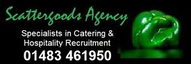 CATERING ASSISTANTS & KITCHEN PORTERS - SURREY - £8.25-£8.75 + HOLIDAY