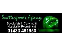 *** MONDAY TO FRIDAY CHEFS WANTED – UPTO £12.25 PER HOUR ***