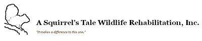 A Squirrel's Tale Wildlife Rehabilitation, Inc.
