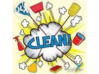 .............:BRILLIANT CLEANING:..............
