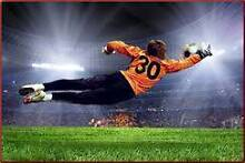 Ex Professional Goalkeeper Looking for a good Soccer Team Pyrmont Inner Sydney Preview