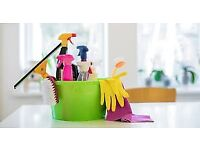 Admirable Domestic Cleaner In Manchester Gumtree Download Free Architecture Designs Ferenbritishbridgeorg