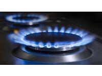 PLUMBER/GAS HEATING/GAS SAFE REGISTERER ENGINEER/BOILER/COOKER & HOB INSTALLATION & REPAIR SERVICES