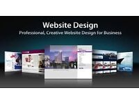 Professional Website Design Only £200