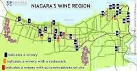 Niagara Wine Tours and/or Sightseeing