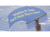 Reliable window cleaner