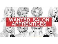 Apprentice Hairdresser required .