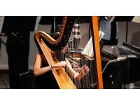 Harp Lessons Available with Experienced Teacher