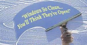 Water fed pole window cleaning,no ladders .Quick and cheap .