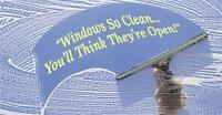 Window cleaning commercial-you price it we do it.