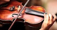 Violin or Music Theory Lessons