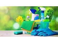 Private Domestic Cleaning Services in Edinburgh – 12£/h