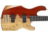 SWAP Jeff Berlin Rithmic Signature Bass, MINT and NEW condition for W.H.Y ?