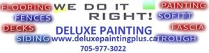 DELUXE PAINTING PLUS ** SO MUCH MORE THAN JUST PAINTING **