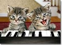 Piano lessons in your home or Daycare or Non-profit Agency RCM