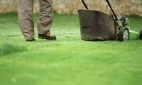 Family Yards Lawn Maintenance! Call for a FREE QUOTE!