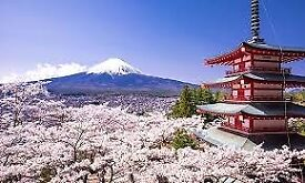Japanese Translation, Interpreting in Edinburgh, Fife, Glasgow, Dundee etc