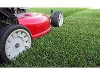 grass cutting and general garden maintenance
