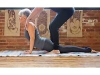 PRIVATE 1-ON-1 YOGA CLASSES AT THE COMFORT OF YOUR OWN HOME, IN YOUR OWN TIME