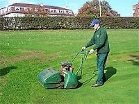 Grass and Hedge cutting service, experienced person