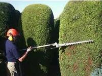 Gardener high quality work free quotes