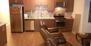 Beautiful 5 Bed - Sandy Hill/uOttawa - $3500 - All In - Sept 1