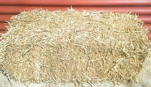 Bails of pea straw, bags of sugar cane mulch, bags lucerne mulch. Magill Campbelltown Area Preview