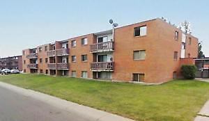 Beautiful 2 bedroom apartments  $800 including all utilities